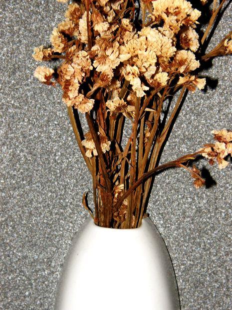 dry flower in vase
