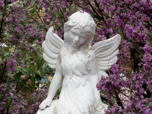 child-angel-garden