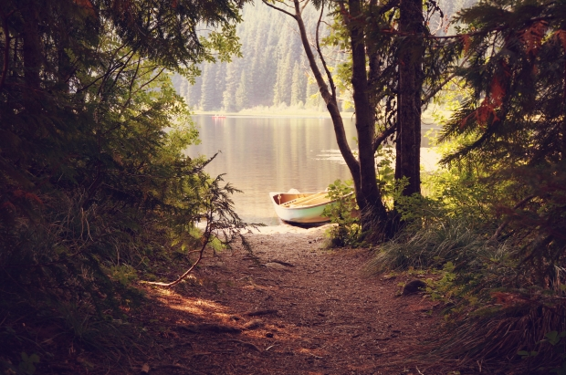 Forest-river-boat